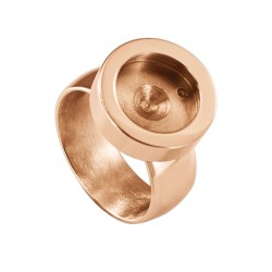 Interchangeable Ring Rose Shiney